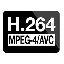 H_264_4001