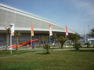 Рядом с конькобежным центром