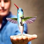 Птица колибри с видеокамерой или новые беспилотные летательные аппараты