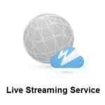 CDN или свой медиа-сервер. Как сделать выбор?