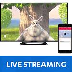 Разработчики плеера JW Player запустили сервис JW Live для организации онлайн трансляций
