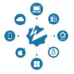 Онлайн курс: «Медиа-сервер Wowza Streaming Engine. Быстрое погружение», 2018 г.